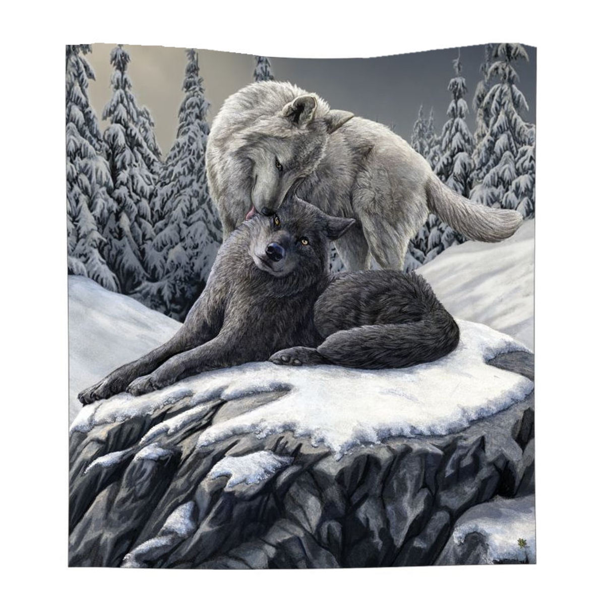deka Snow Kisses Throw - B4337M8