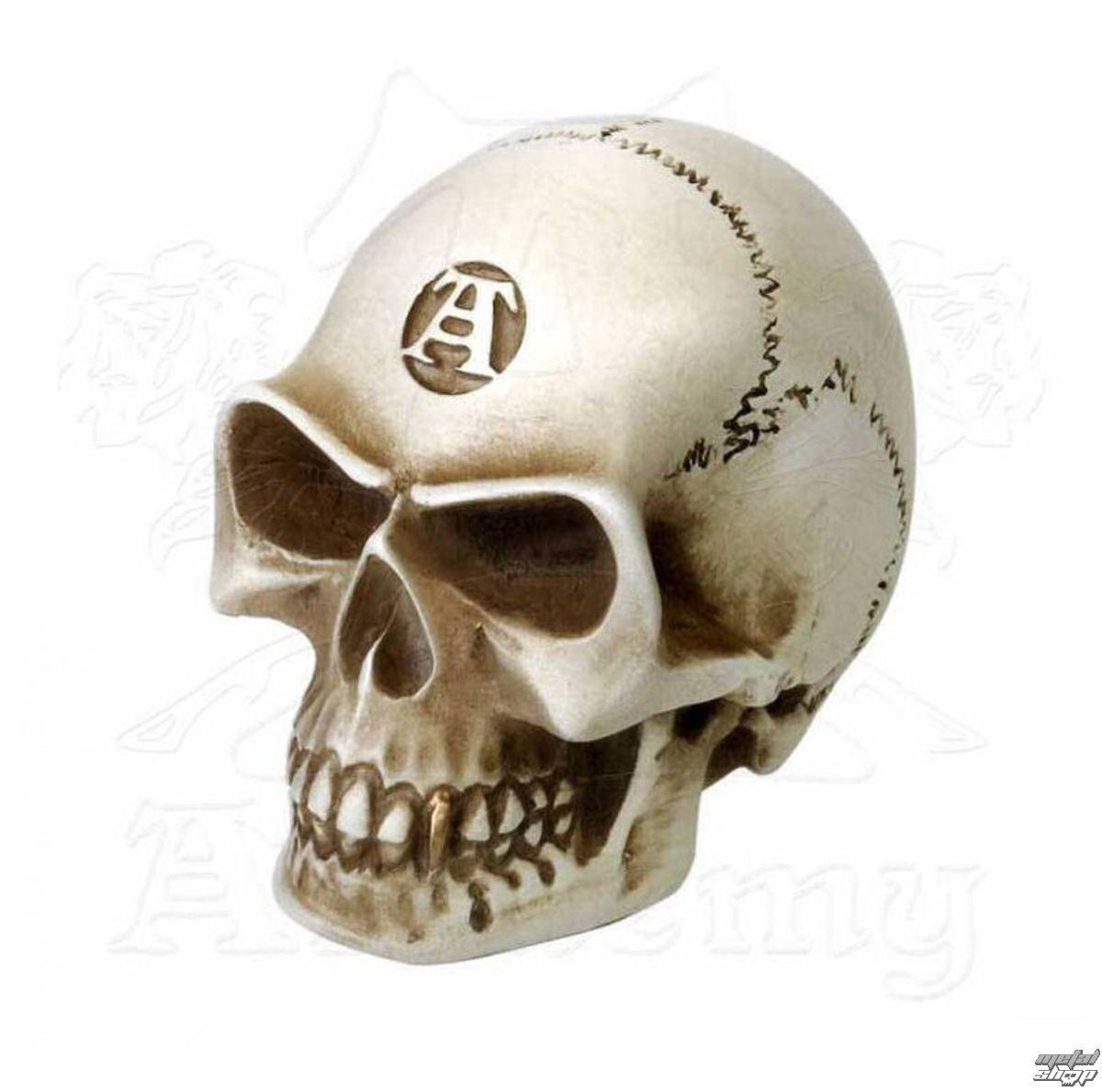 dekorace (hlavice řadicí páky) ALCHEMY GOTHIC - Alchemist Gear Knob: Bone - V40