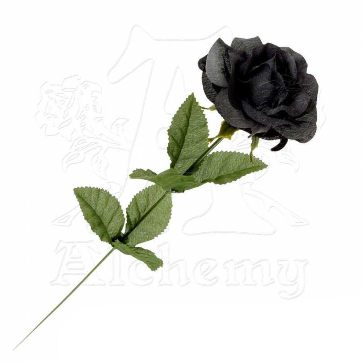 černá růže Black Imitation Rose