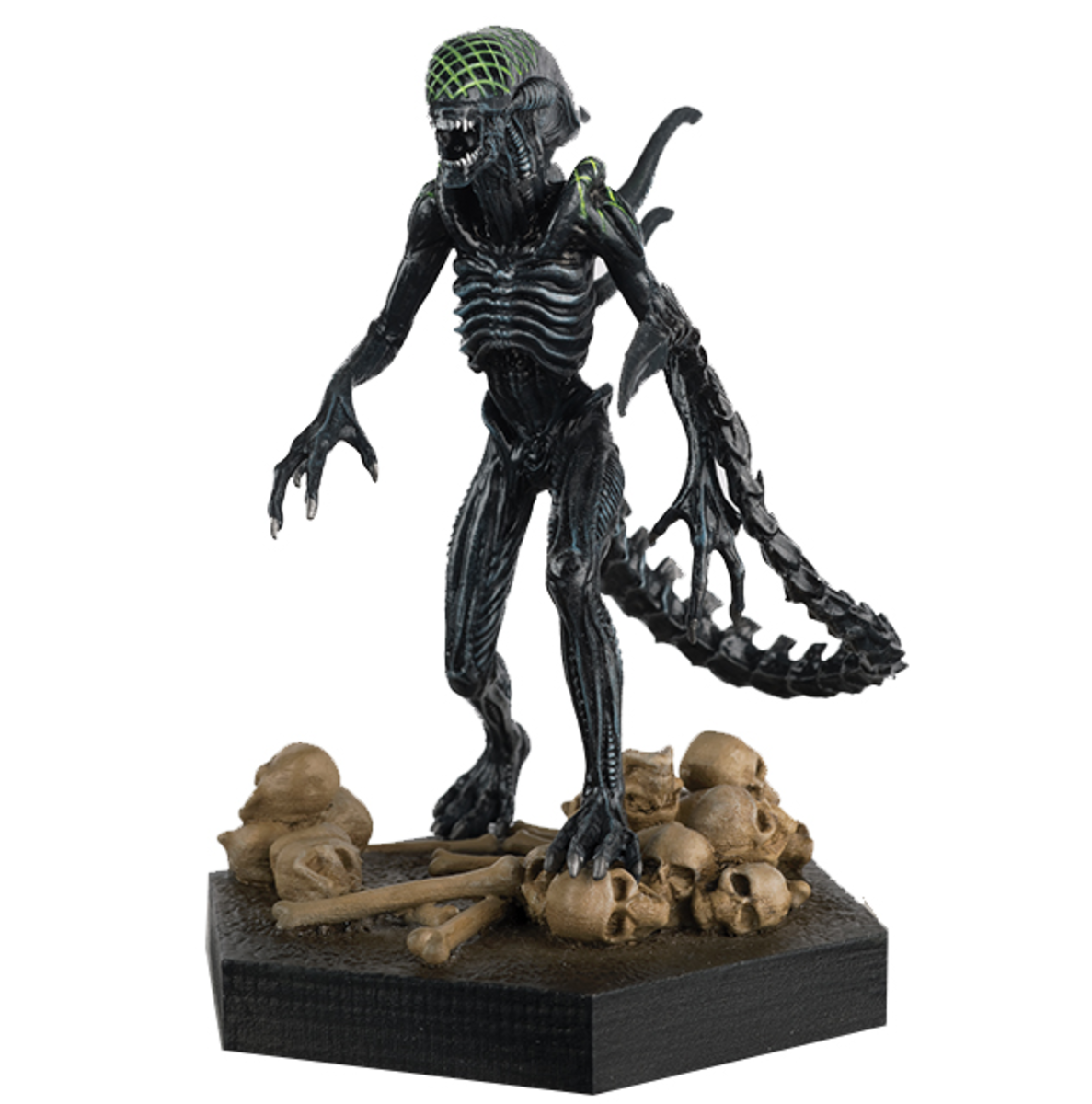 figurka The Alien & Predator - Collection Grid Xenomorph - (Alien vs. Predator) - EAMOJUN172657