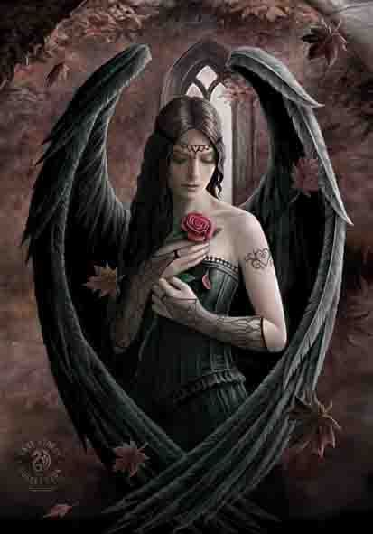 vlajka Anne Stokes - Angel Rose - HFL1030