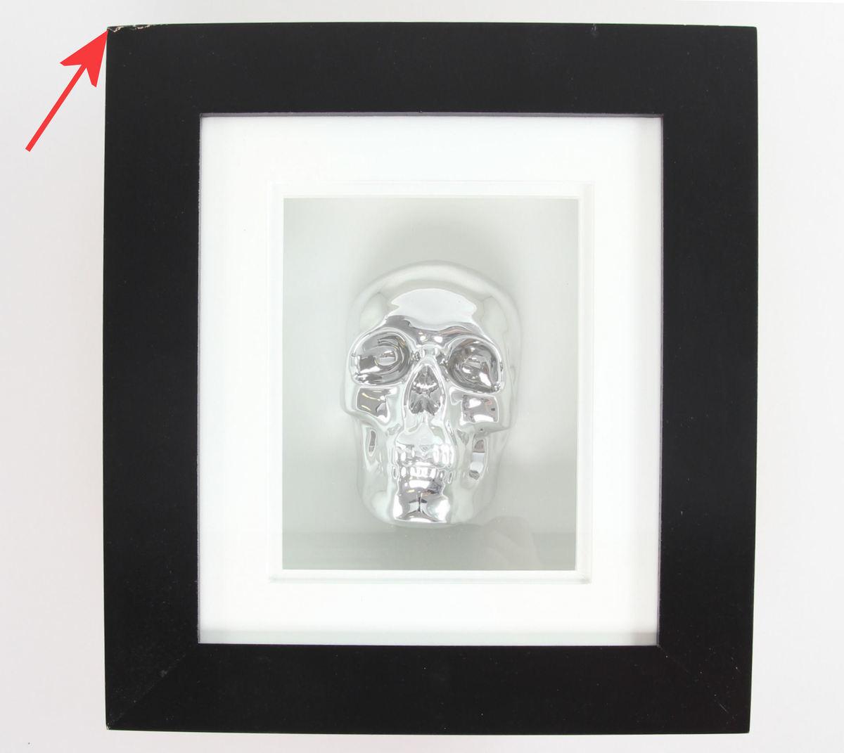 obraz Silver Skull In Frame - POŠKOZENÝ - N10