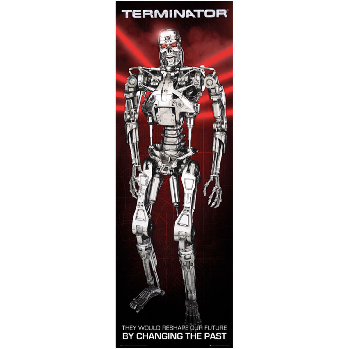 plakát The Terminator - Future - GB posters - DP0243