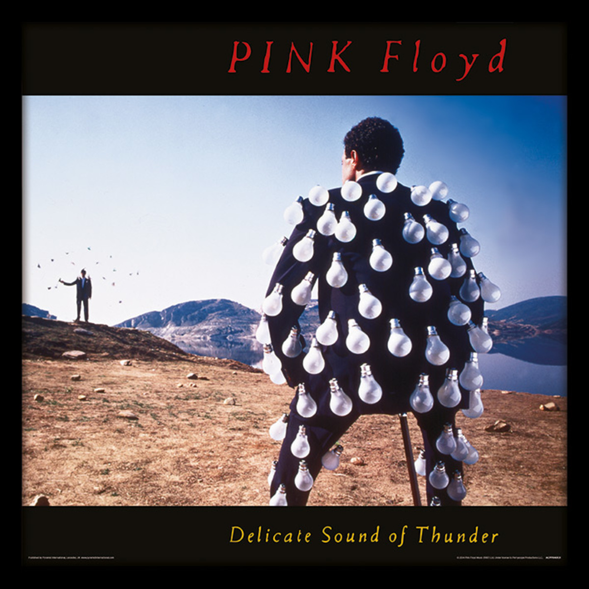 obraz Pink Floyd - (Delicate Sound of Thunder) - PYRAMID POSTERS - ACPPR48131