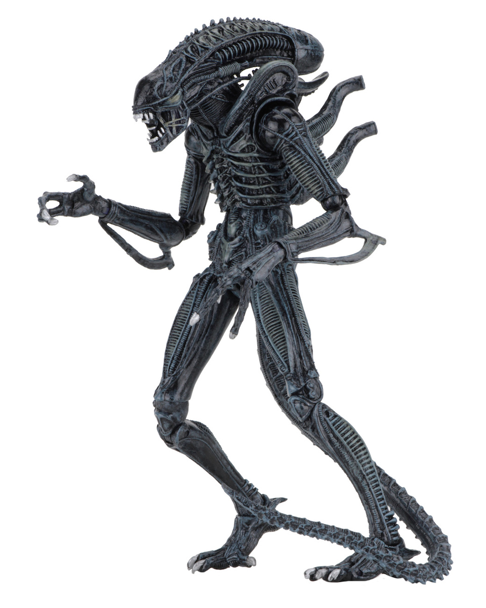 figurka (dekorace) Aliens - Ultimate Warrior - NECA51644-b