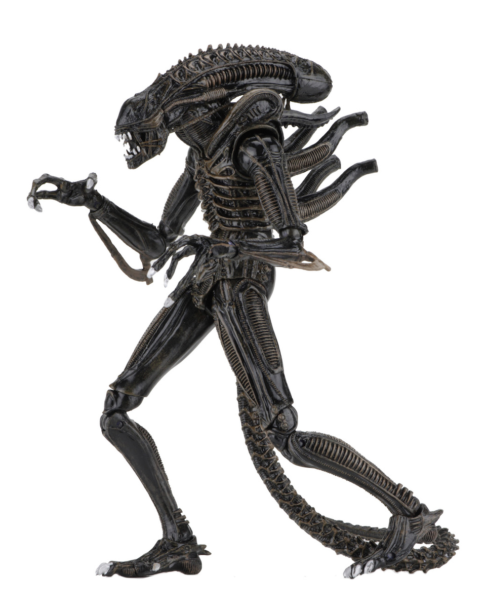 figurka (dekorace) Aliens - Ultimate Warrior - NECA51644