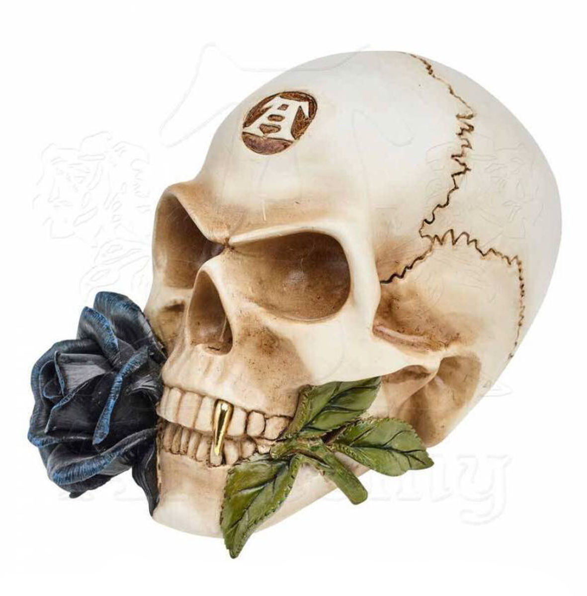 dekorace ALCHEMY GOTHIC - Alchemist Skull with Rose - V44