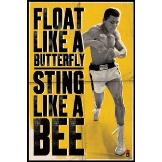 plakát Muhammad Ali - Float Like A Butterfly - PYRAMID POSTERS - PP31685