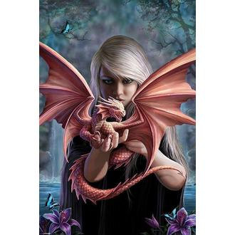 plakát ANNE STOKES - Dragonkin - PYRAMID POSTERS - PP33276