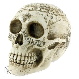dekorace Astrological Skull - D1418D5