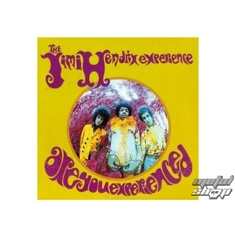 figurka (3D obrázek) JIMI HENDRIX are you experienced plaque Figure