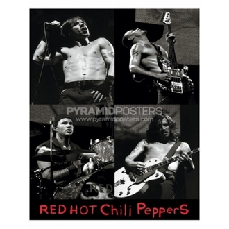 Plakát - Red Hot Chili Peppers - PP0740 - Pyramid Posters