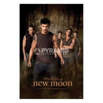 plakát Twilight - New Moon (Wolf Pack) (Stmívání) - PP32065 - PYRAMID POSTERS